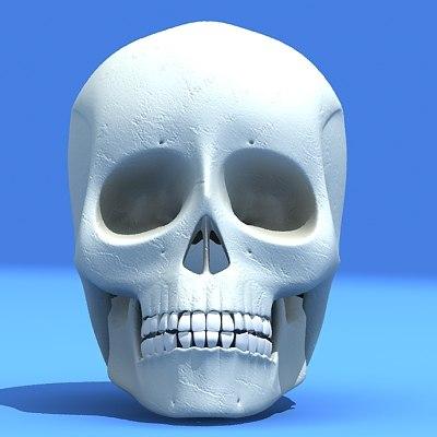 human skull 3d max