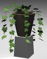 3d model common ivy potted plant