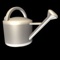 Chrome Watering Can