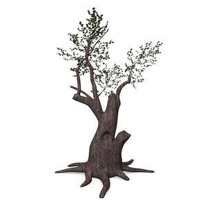 3ds max old oak