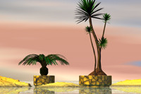 free br4 model tropical palms pot