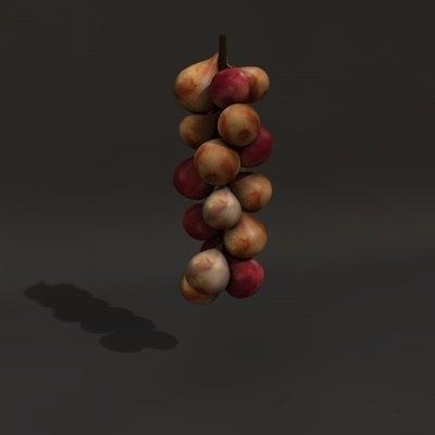 onions obj