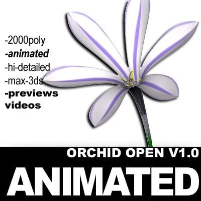 3d model realistic flower animation open