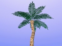 free obj model palm tree