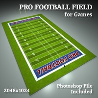 Professional Football Field