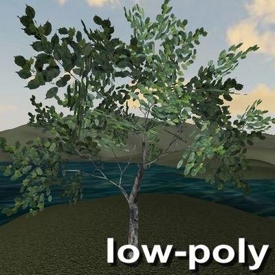 3d tree leaves model