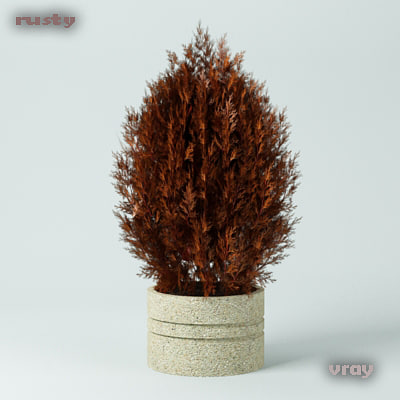 3d fir tree bush
