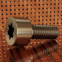 screw torx 6 3d model