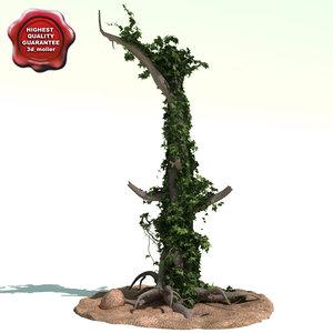 old tree ivy 3d model