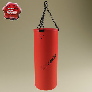 3ds boxing heavy bag