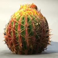 Desert_plant_10.zip