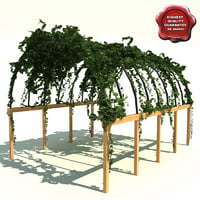Pergola path with ivy V2