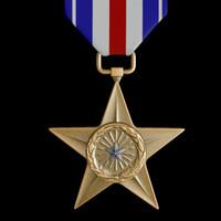 silver star medal 3d model