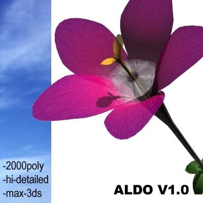realistic medium 3d model