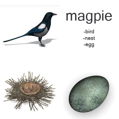 max magpie set