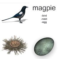 magpie set