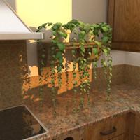 3D Hanging Plant