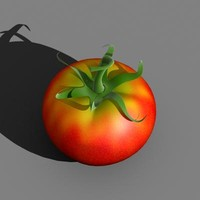 tomato vegetable 3d model