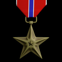 bronze star medal 3d model