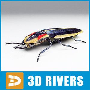 firefly bugs beetles 3d model