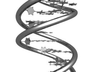 3d model dna chain
