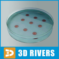 3d model medical glass sampler