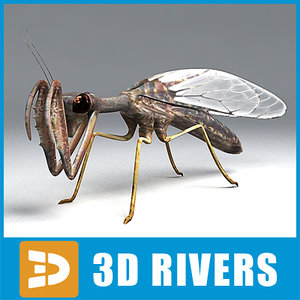 mantispid insect mantid 3d 3ds