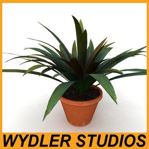 houseplant plant 3d 3ds