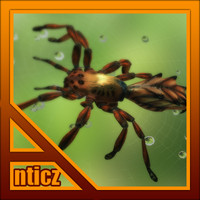 red spider 3d max