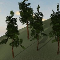 Tree model # 6