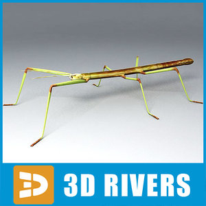 obj stick insect
