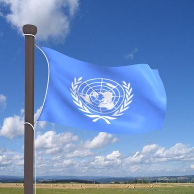 3ds real flag cloth