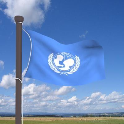 3d model of real flag cloth