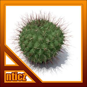 mountain ball cactus max free