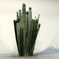 3d model of pc desert