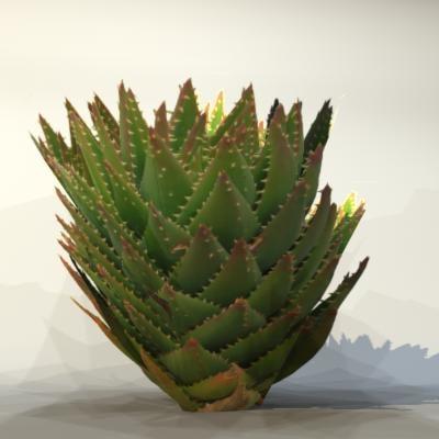 3d model pc desert