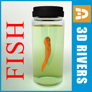 3ds second stage fish embryo