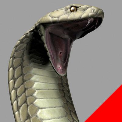 3d model king cobra