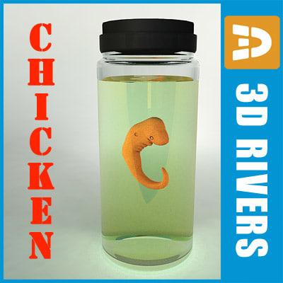 3d stage chicken embryo