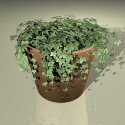 ivy plant 3ds