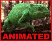 chameleon - 3d model
