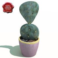 3d model of cactus opuntia rufida