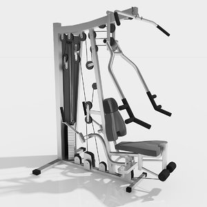 multigym excercise gym 3d max