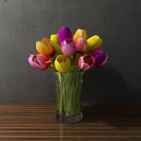 tulip in glass vase