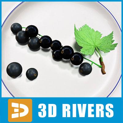 3d black currant