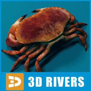 3d crab sea model