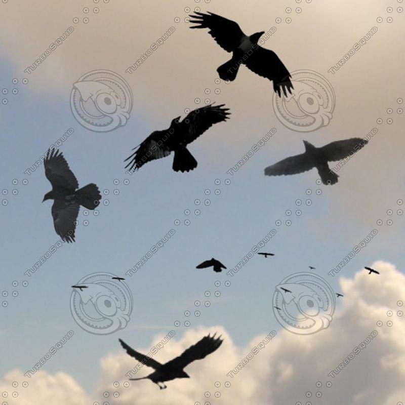 6 crows blend