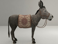 oriental_donkey.rar