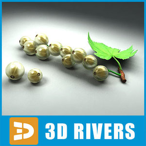 3d white currant fruit