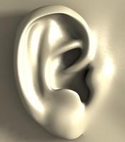 3d external ear model